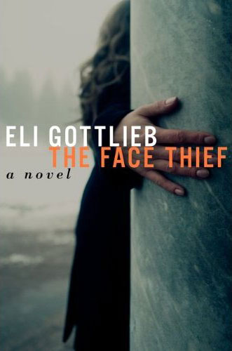 The Face Thief: A Novel Book Cover